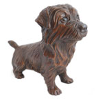 Click here to see Norfolk Terrier Bronze!