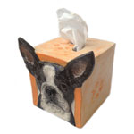 Click here to see Tissue Box Covers!